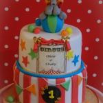 Bij-okidoki-kindertaarten-bussum-naarden-hilversum-kortenhoef-s-gravenland-huizen-bruidstaarten-verjaardagstaarten-dripcakes-circustaart