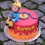 bij-okidoki kindertaarten bussum naarden hilversum bruidstaarten verjaardagstaarten kinderpartijtjes brandweertaart